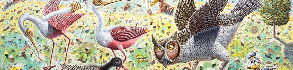 Beak Morphology, Morgan Bulkeley