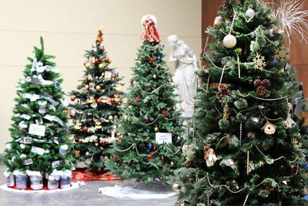 Trees being readied for the Berkshire Museum Festival of Trees
