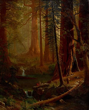 Albert Bierstadt, Giant Redwood Trees of California