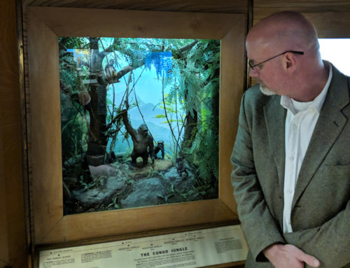 Berkshire Museum's Endless Stories